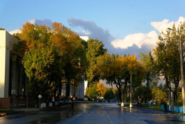Broad tree-lined boulevards that are typical of the streets of Tashkent's city centre.